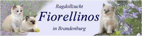 logo-Fiorellinos
