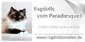 logo-ragdollparadies