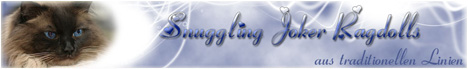 logo-snuggling-neu